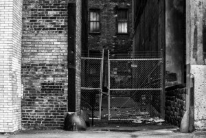 2015-01-23 Alley #14