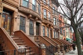Street in Harlem