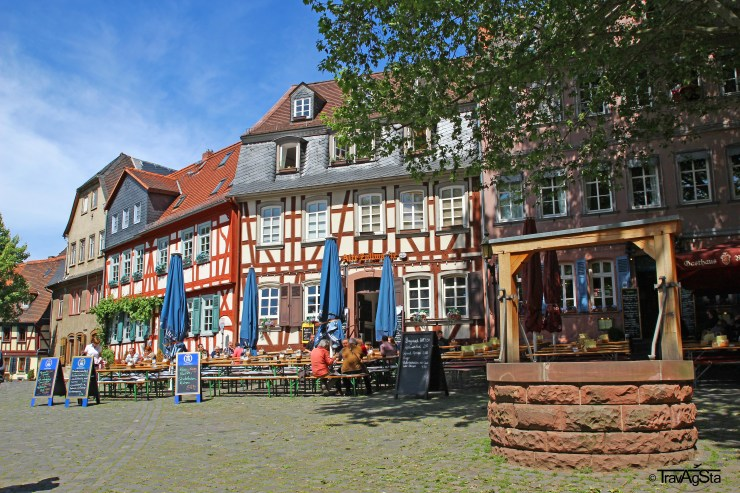 Frankfurt-Höchst, Frankfurt am Main, Germany