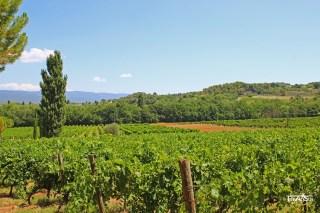 Domaine de Tara, Provence, France
