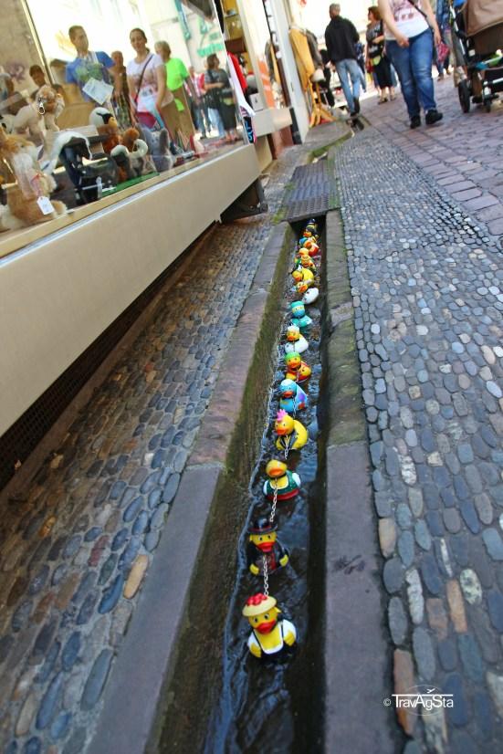 Freiburg (2)t