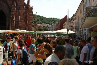 Freiburg (5)t