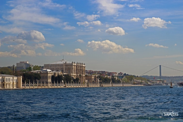 IMG_1157t