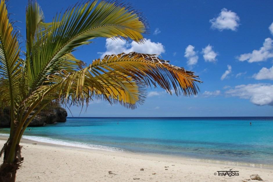Grote Knip, Curaçao