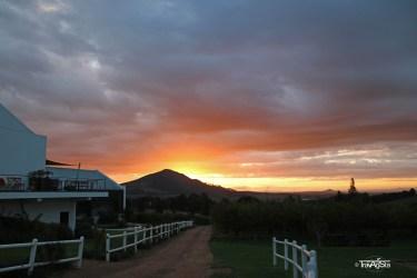 Marianne Wine Estate, Stellenbosch, South Africa