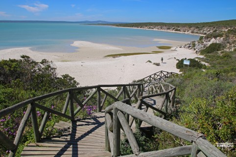 Langebaan-Lagoon, West Coast National Park, South Africa