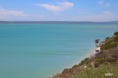 Langebaan-Lagoon, West Coast National Park, South Africa