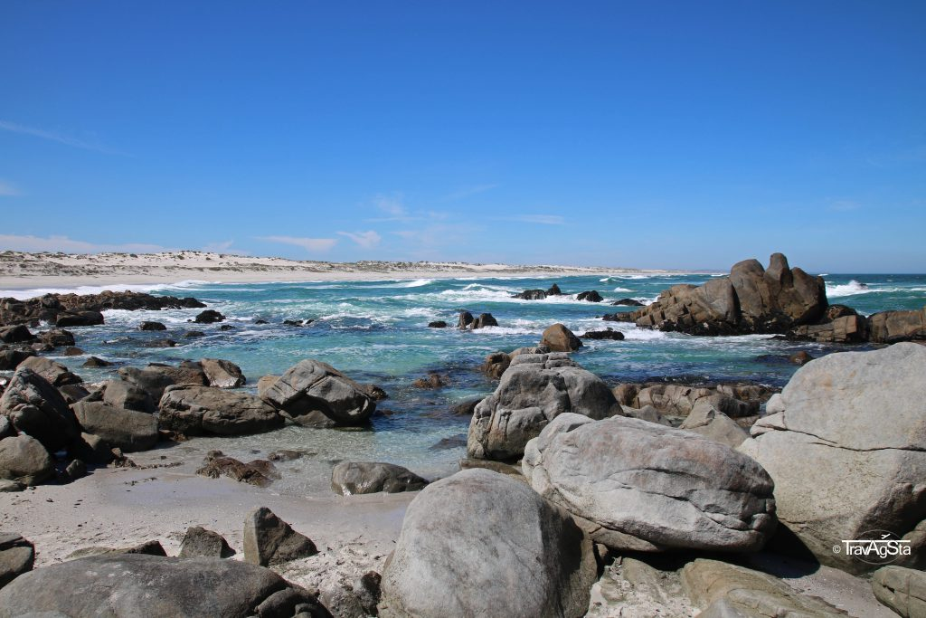 Tsaarbank, West Coast National Park, South Africa