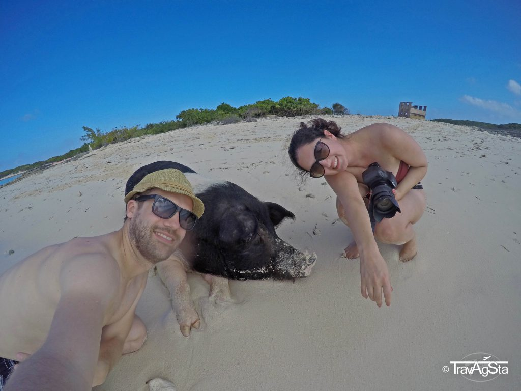 The Swimming Pigs, The Bahamas