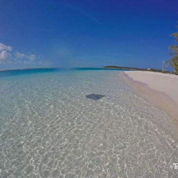 Die Exumas, Bahamas – ein Paradies auf Erden!
