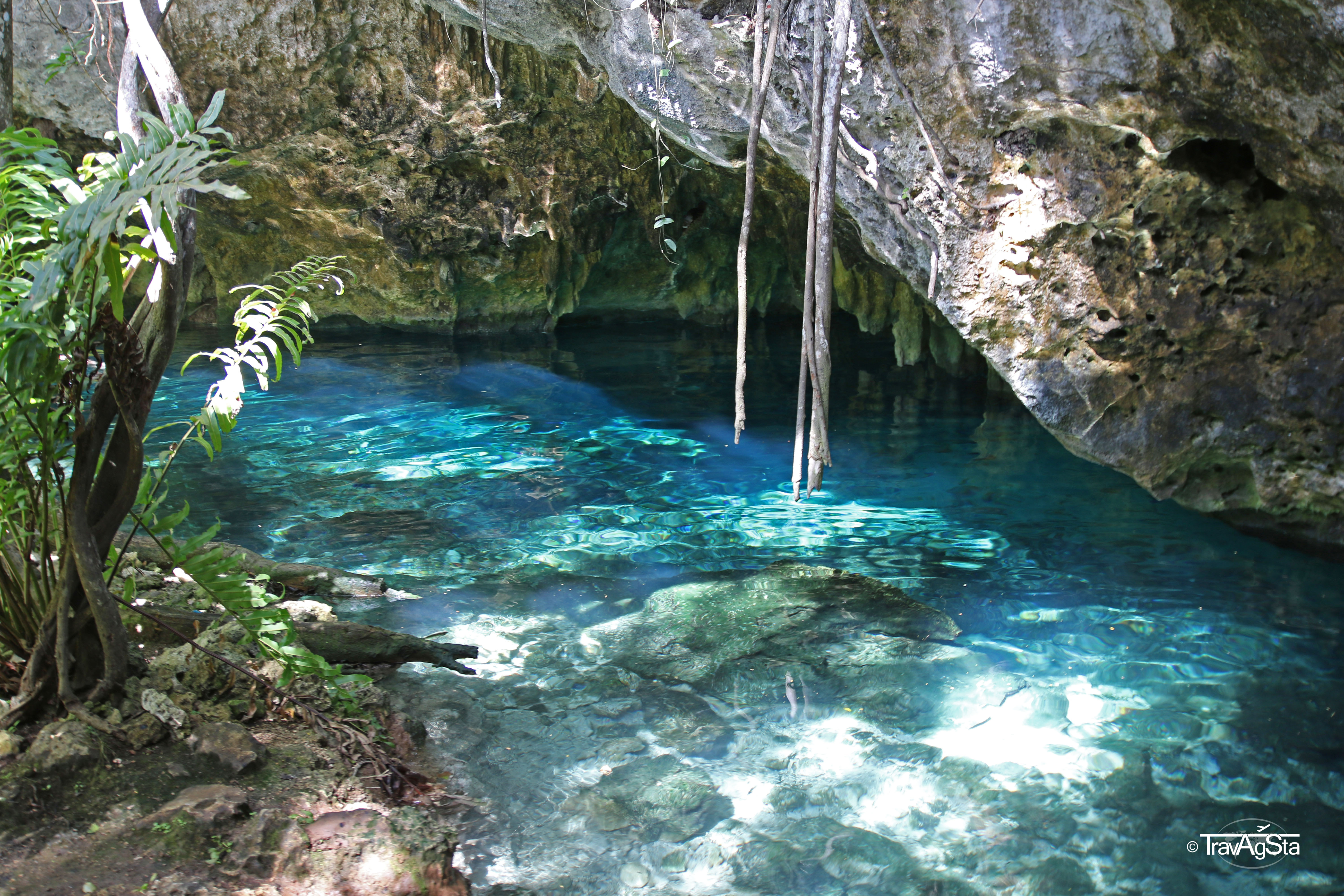 The Riviera Maya on the Yucatan peninsula: Gran Cenote and tourist hell around Akumal and Tulum!