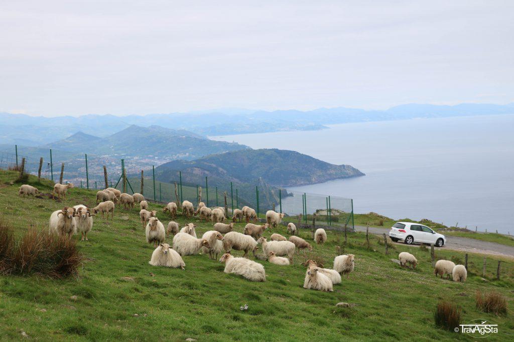Camino de Santiago, Spain/Basque Country
