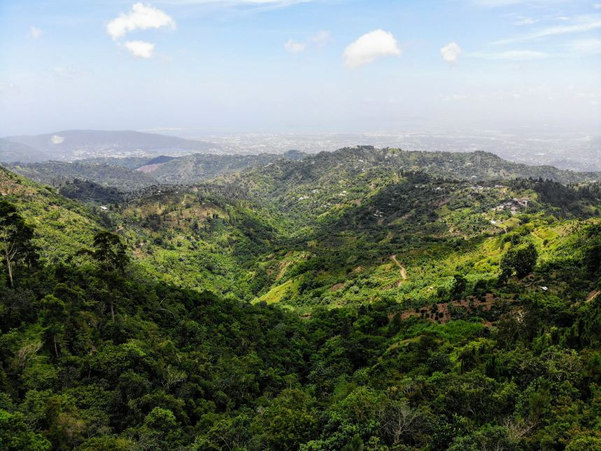 ecotourism in jamaica blue mountains