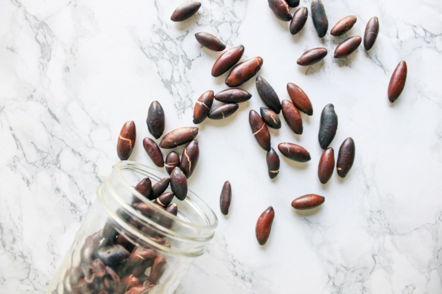 Global superfoods baru seeds