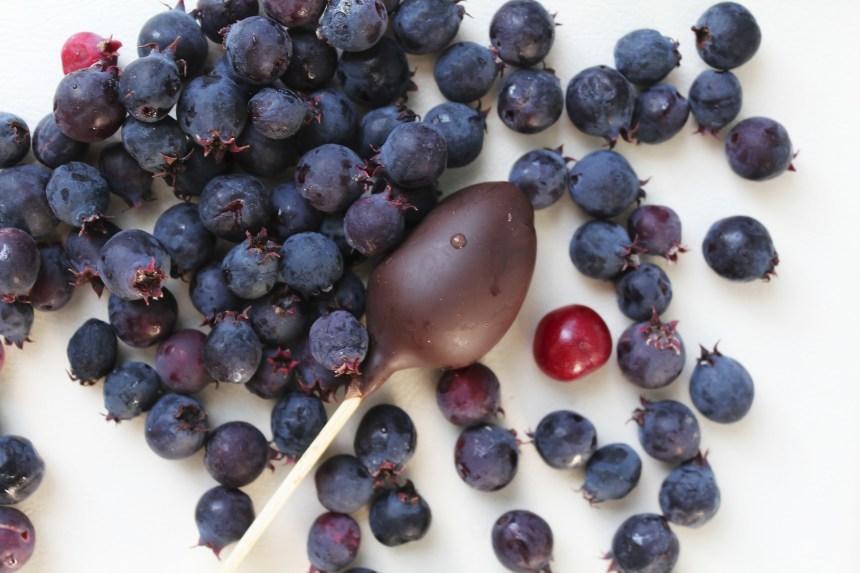 saskatoon berries global superfoods