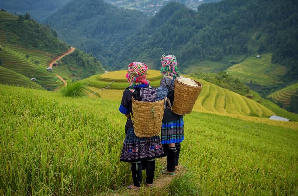 Tipy: Jak si nejlépe užít Vietnam za 15 dní?