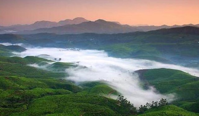 Coorg Beauty
