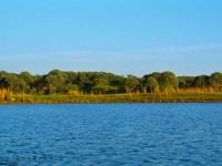 Weekend getaways near Delhi NCR : Damdam Lake