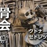 #3.中欧一人旅・骸骨教会へ!(セドレツ納骨堂)