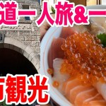 【北海道一人旅&一人飯】余市でニッカウヰスキー見学&美味しい海鮮丼を柿崎商店で頂く