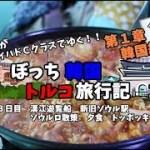 【韓国グルメ】漢江クルーズしたあと、トッポッキを食す! 韓国トルコ旅行記14