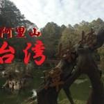 チキンの旅日誌 台湾グルメ旅行Ⅱ⑩ 阿里山散策編