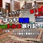 【トルコ絨毯】25万円の絨毯を買わされかた話 韓国トルコ旅行記39