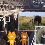 イタリア旅2019その27 コロッセオの入場無料デー(毎月第1日曜日)、凄い! ローマ!【無職旅】【旅行記】