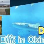 【沖縄VLOG】琉球ひとり旅2019 ~美ら海水族館、ゴーヤチャンプルー、沖縄ステーキ~【DAY3】