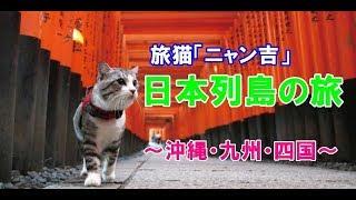旅猫「ニャン吉」日本列島の旅~沖縄・九州・四国~