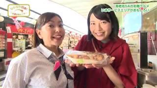なかなか日本!~高速道路女子旅~ #48 海老名SAの名物グルメ いまサービスエリアがおもしろい