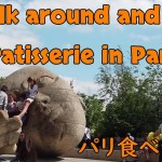 Walk around and eat Patisserie in Paris 【海外旅行記】パリ・フランス食べ歩き編