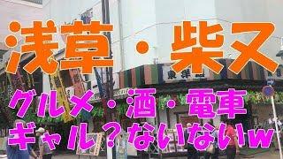 【酒・女・グルメ】オッサン一人旅で浅草・柴又・東京都下!