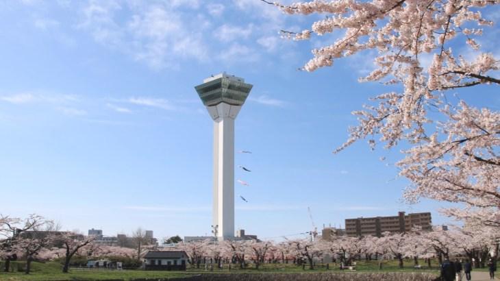 【旅エイター】桜前線『五稜郭公園①』 北海道函館市