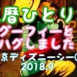 グーフィーとハグしたー!エアーテニスも!還暦ひとり旅 東京ディズニーシー③ 2018.9
