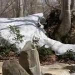 小谷温泉、露天風呂、開湯,`冬季休業明け