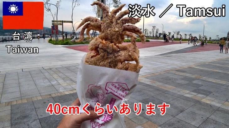 台湾旅2019その7 淡水で巨大イカフライを食べるのと、士林夜市の散策(前編)です【無職旅/海外旅行のVLOG】