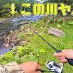 【北海道釣り旅】道路脇の小川でルアー投げたら凄かった!【知床半島】#5