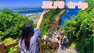 【VLOG】JEJU trip/japan→korea/チェジュ旅行/買い物/東門市場/地下商店街/e-mart/Lotte mart