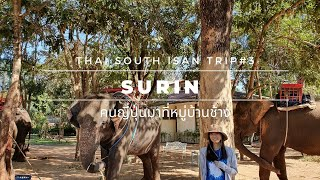 [สุรินทร์] 象と暮らす村に到着!タイのスリン県【南イサーン鉄道旅行記Prat3】