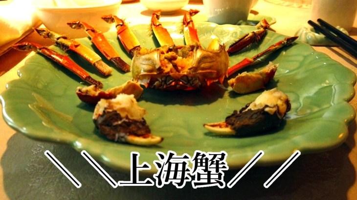 女子旅!上海旅行に行ってきた/上海ディズニーランド/上海蟹【2019.10中国旅行】