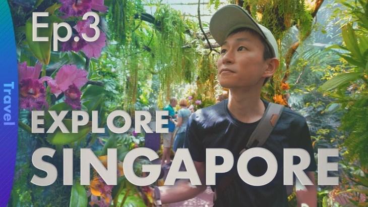 [fpsTV] Ep.3 シンガポール旅行記(終)/最後まで定番の観光地をめぐるドキュメンタリー風Vlog