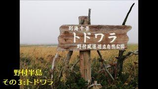 【Goto北海道】9/6③ 朝5:51~、野付半島その3:トドワラ(前半)