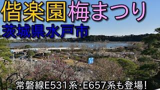 茨城県水戸偕楽園梅まつりの旅!常磐線特急E657系も登場&水戸駅の夜