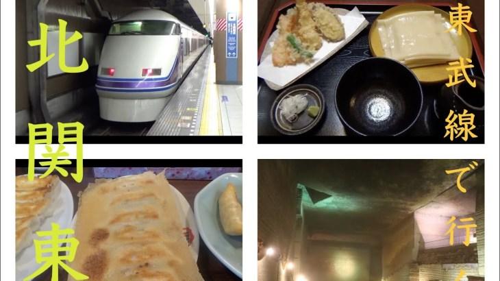 【北関東旅行】宇都宮餃子とひもかわうどんを食べて帰る旅!