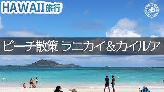 【ハワイ旅行】ラニカイビーチ&カイルアビーチ編/レンタサイクルで天国のビーチへ!海にはお魚もいっぱい!!ハワイの海は本当にキレイ♪【4K】