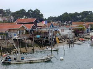 Cap ferret oyster village