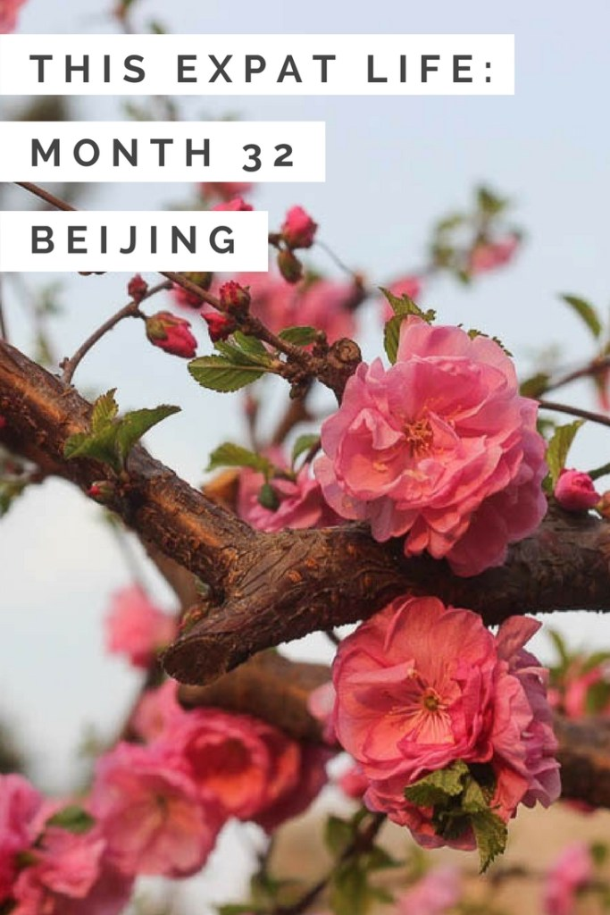 living-in-beijing-month-32