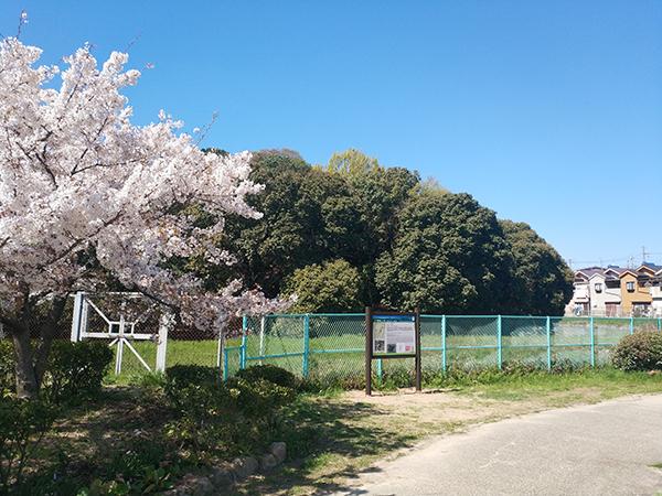 仁賢天皇陵(ボケ山古墳)