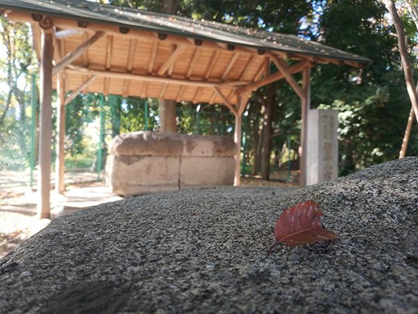 徳楽山古墳